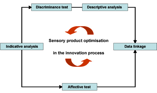 Figure: Sensory product optimisation in the innovation process